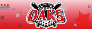 野口寿浩 野球スクール「Oaks」